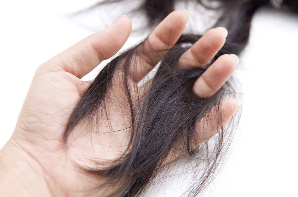 Hair Loss Ethos Integrative Medicine